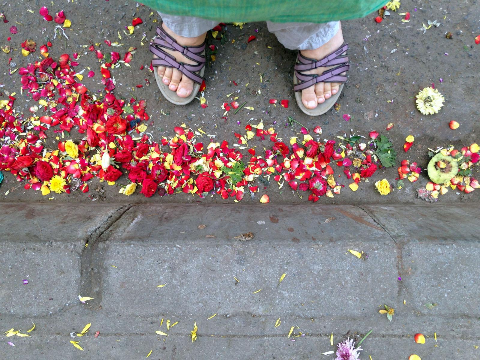 flowers-at-my-feet.jpg
