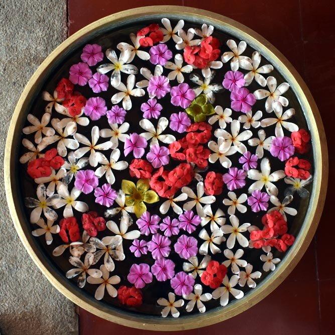 travel-india-bowl-flowers-1000.jpg