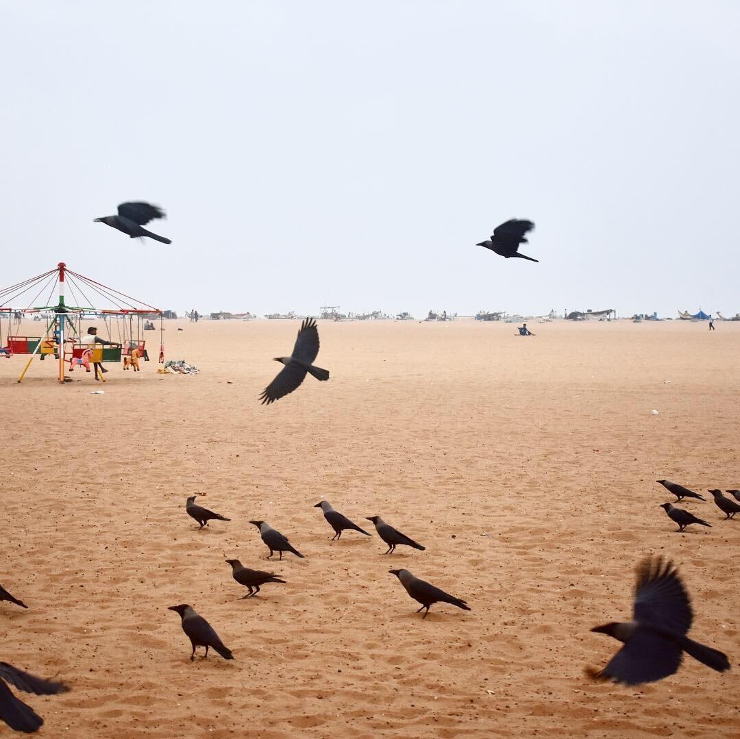 travel-india-chennai-beach-1000.JPG