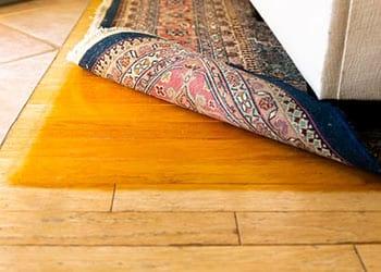 How to protect hardwood floors.jpg
