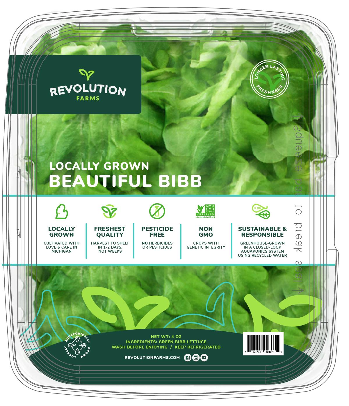 Green Bibb Lettuce Placeholder.jpg