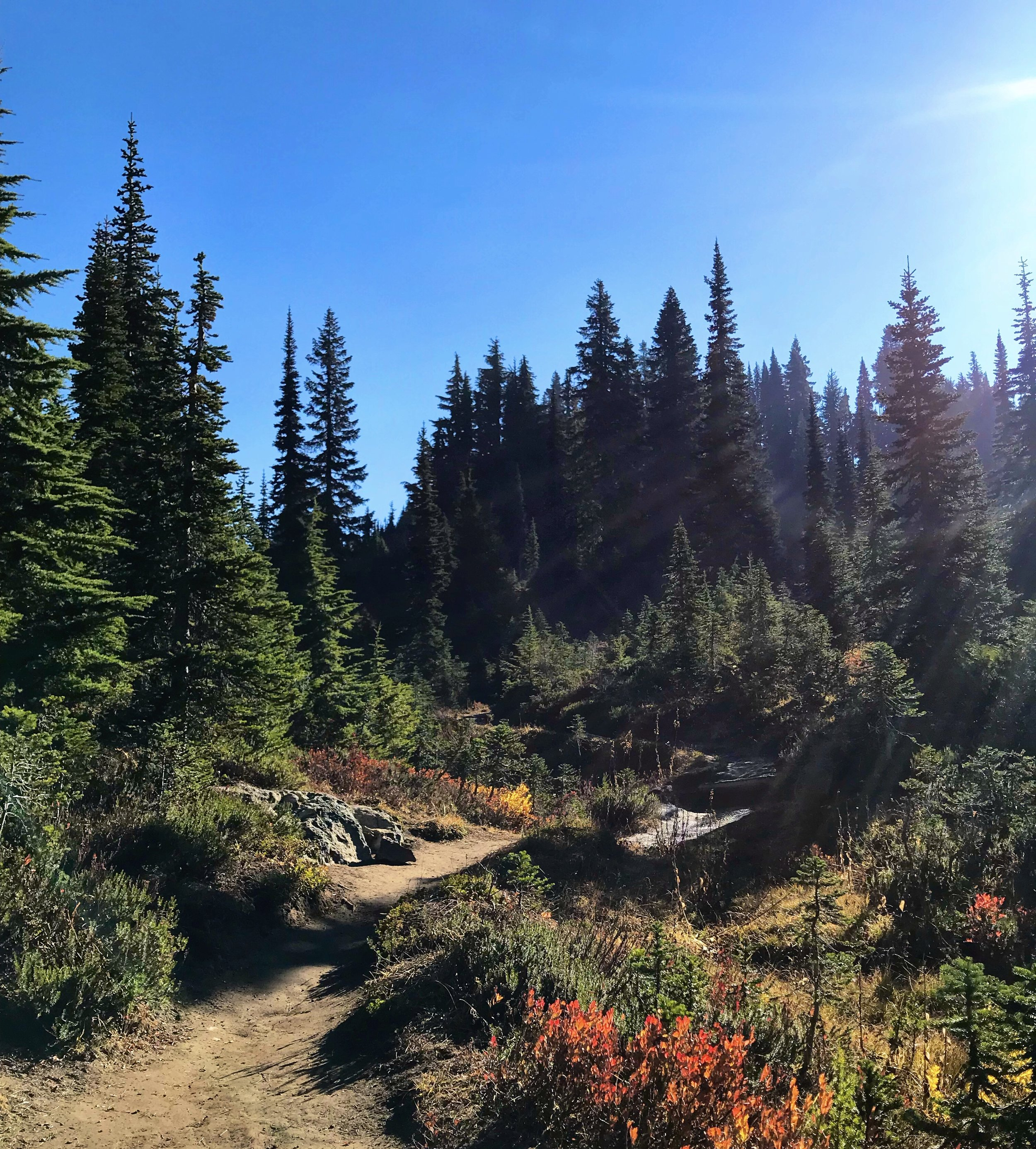 Naches Peak Loop Trail, WA state