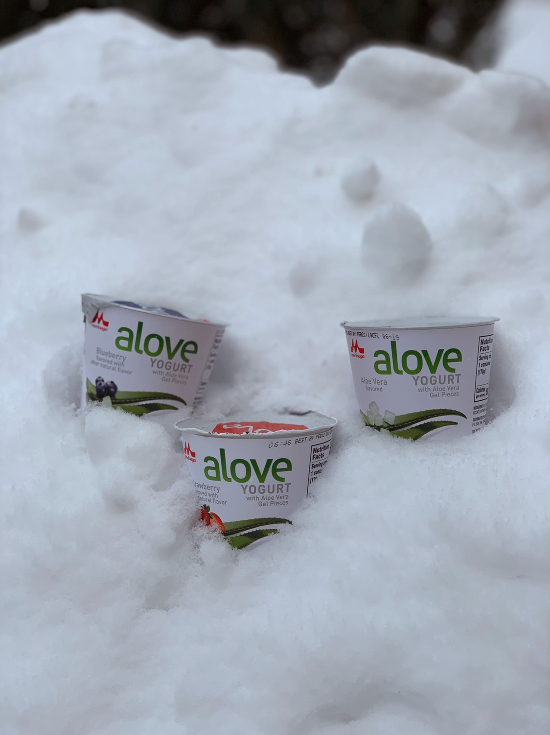 Alove in the midst of the Washington State snow storm