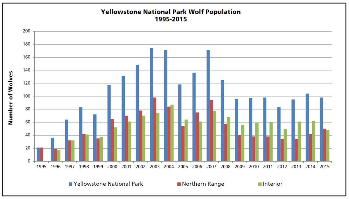 Figure 1. Yellowstone National Park wolf numbers in early winter, 1995-2015. NPS