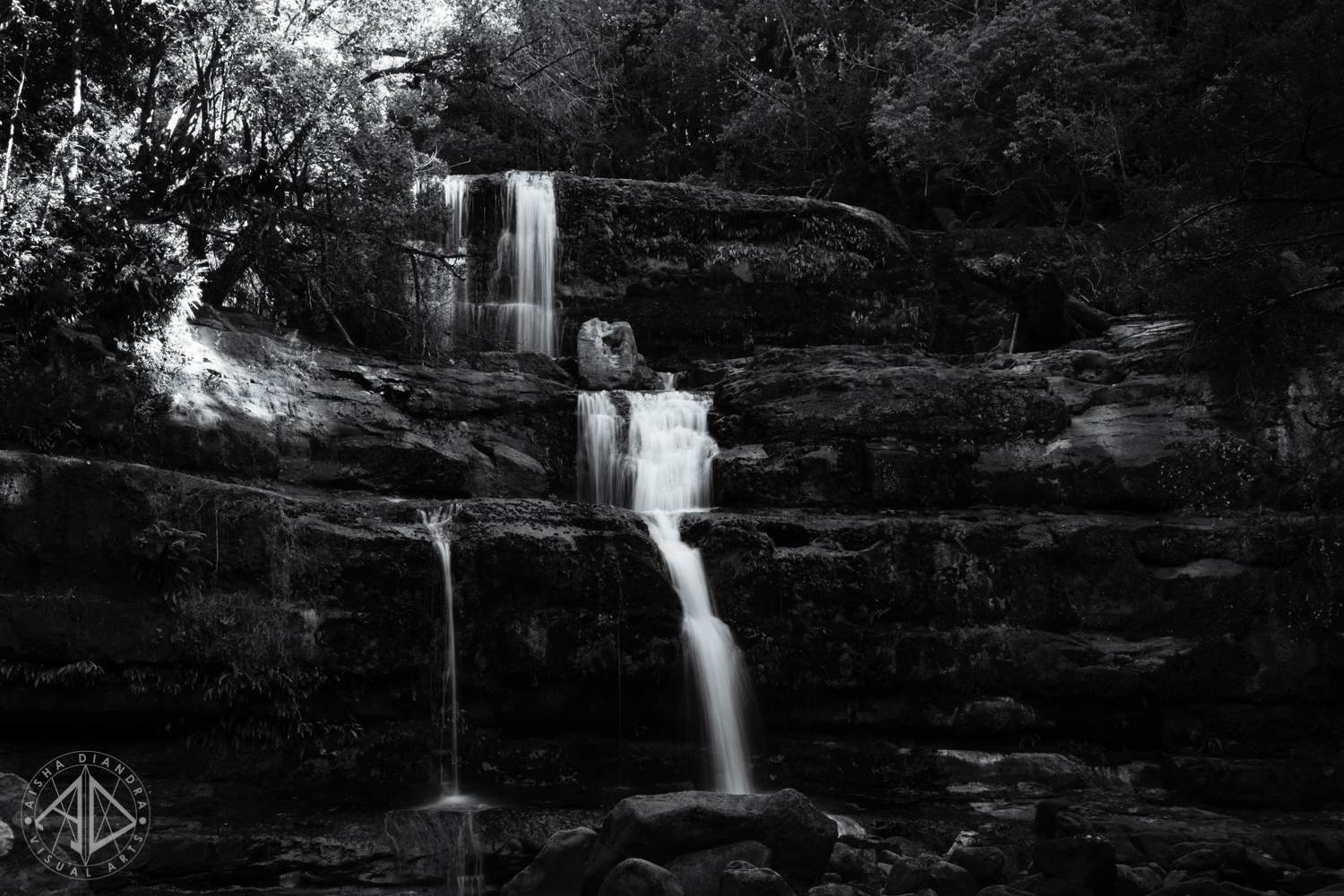 Liffey Falls.  Click to see the rest of the gallery.