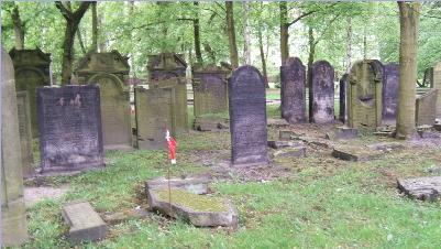Ancient Jewish Cemetery, Hamburg. Ashkenazi tombstones are upright, Sephardi lie flat on the ground