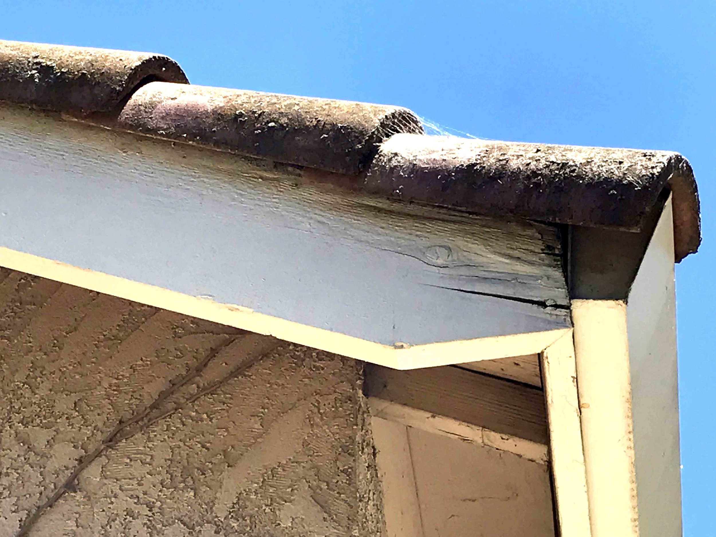 Roof leaks_Missing shingles and Dry rot can all be repaired with our expertise at Peterson Roofing (4).jpg