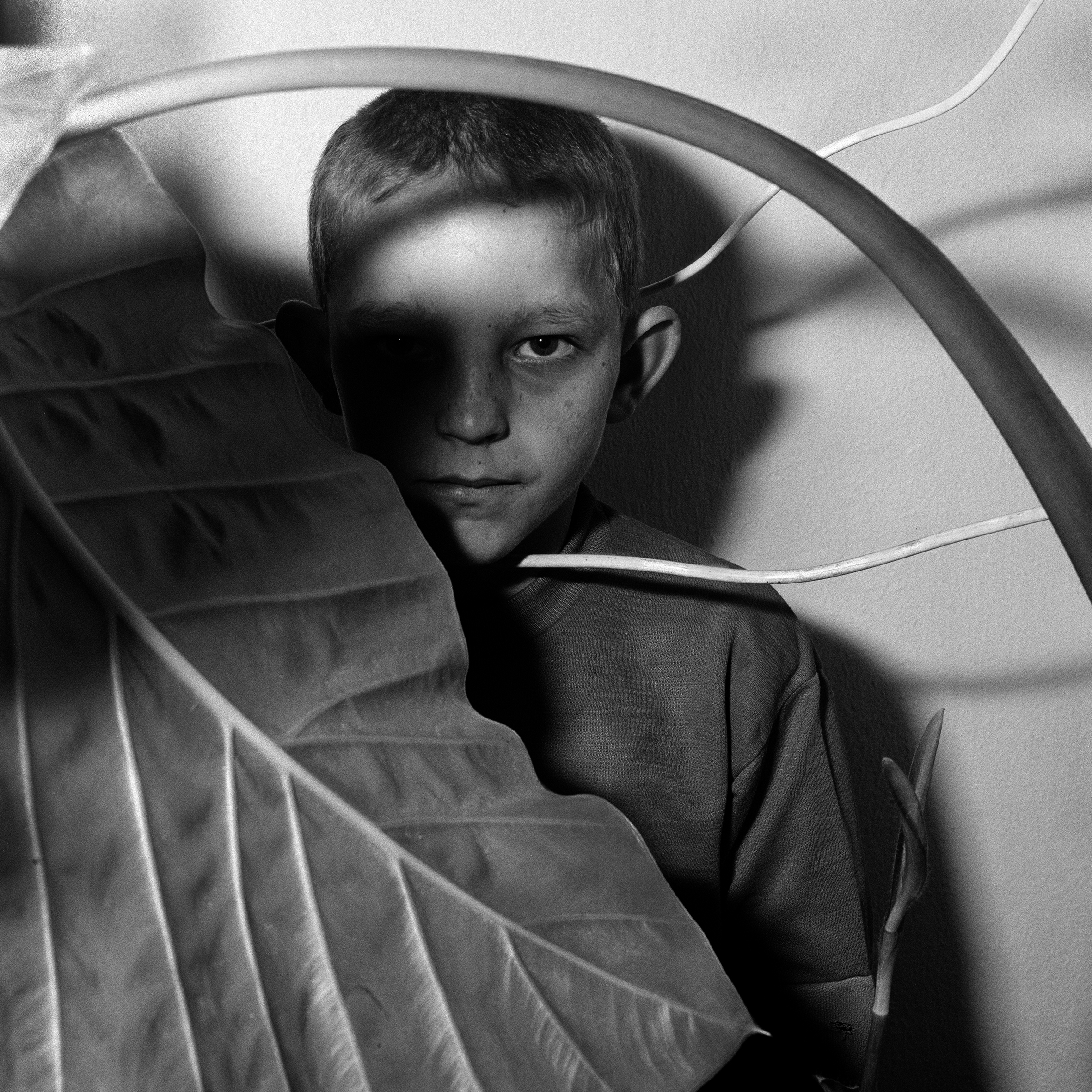 Roger Ballen_Study of Boy and Plant, 1999_camara oscura.jpg