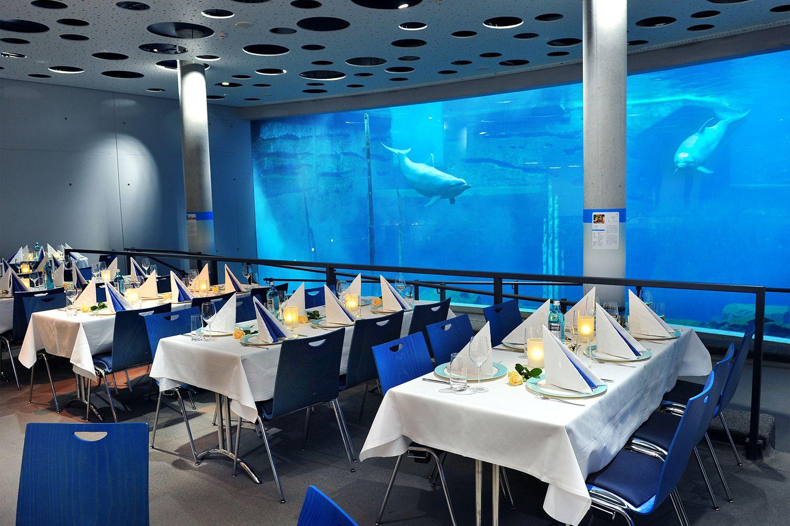 Blauer Salon in der Delphinlagune