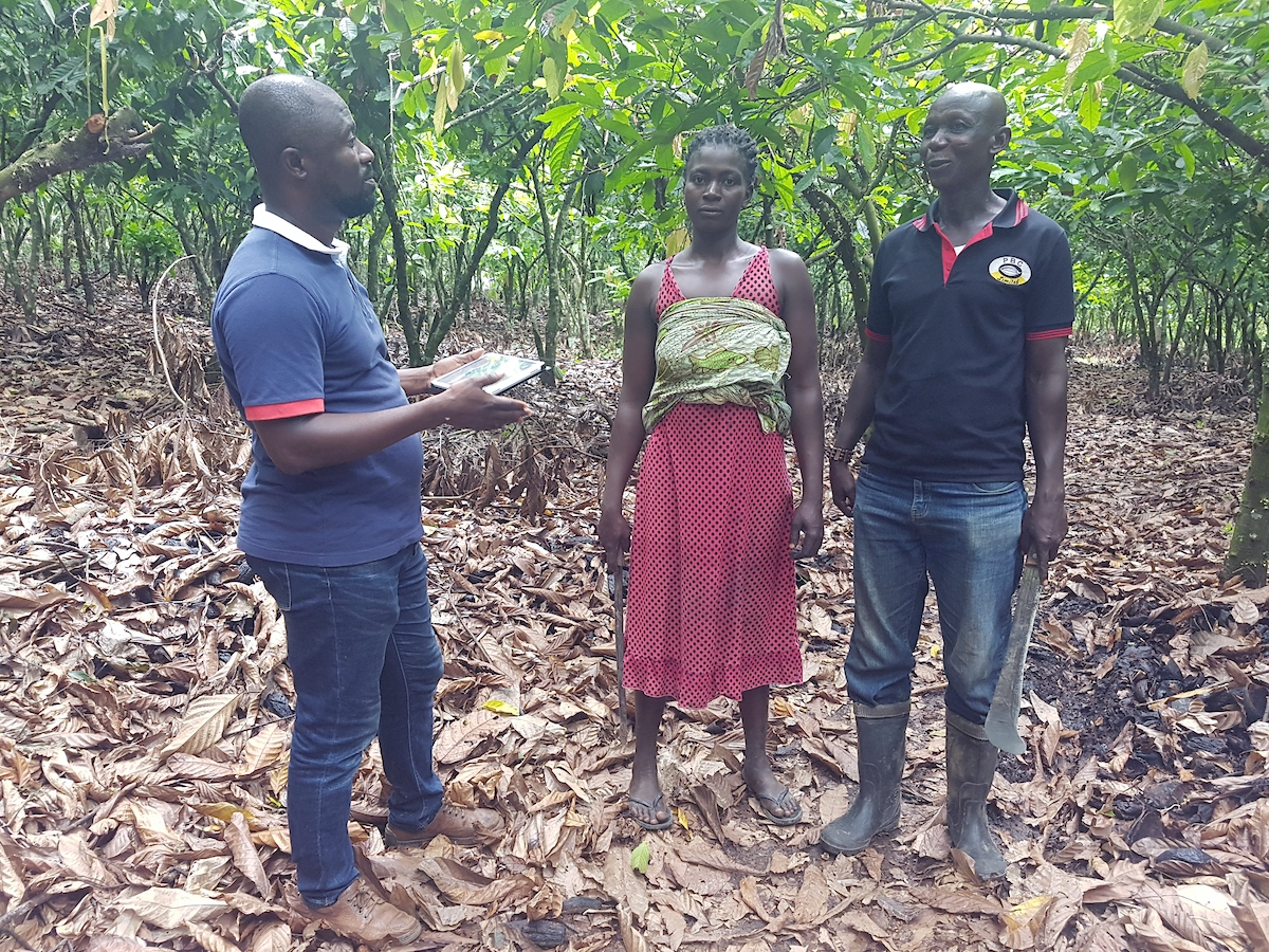SAT4Farming: Field coordinator Isaac Addo (left) meets with workers.