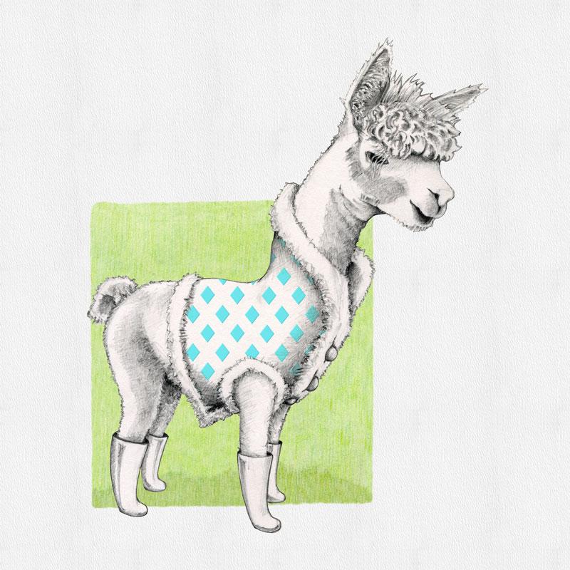 Alpaca in Vest by Mariana:  Floating Lemons Art
