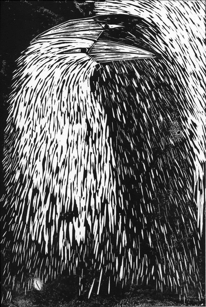Raven Embrace 2 by Mariana:  Floating Lemons Art
