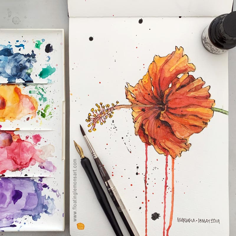 Inky Hibiscus by Mariana:  Floating Lemons Art