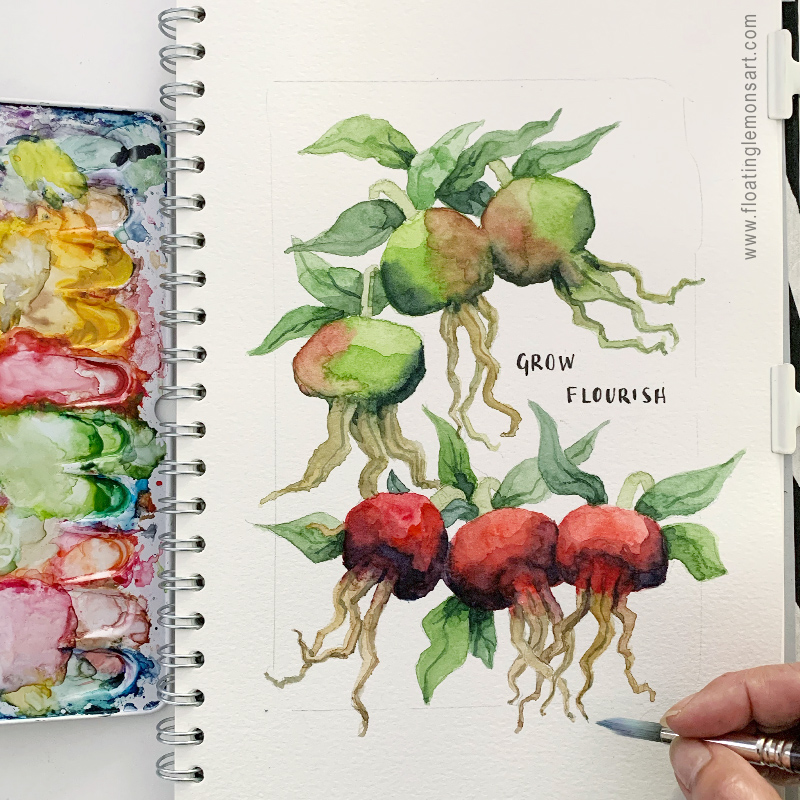 Rose Hip Sketch by Mariana:  Floating Lemons Art