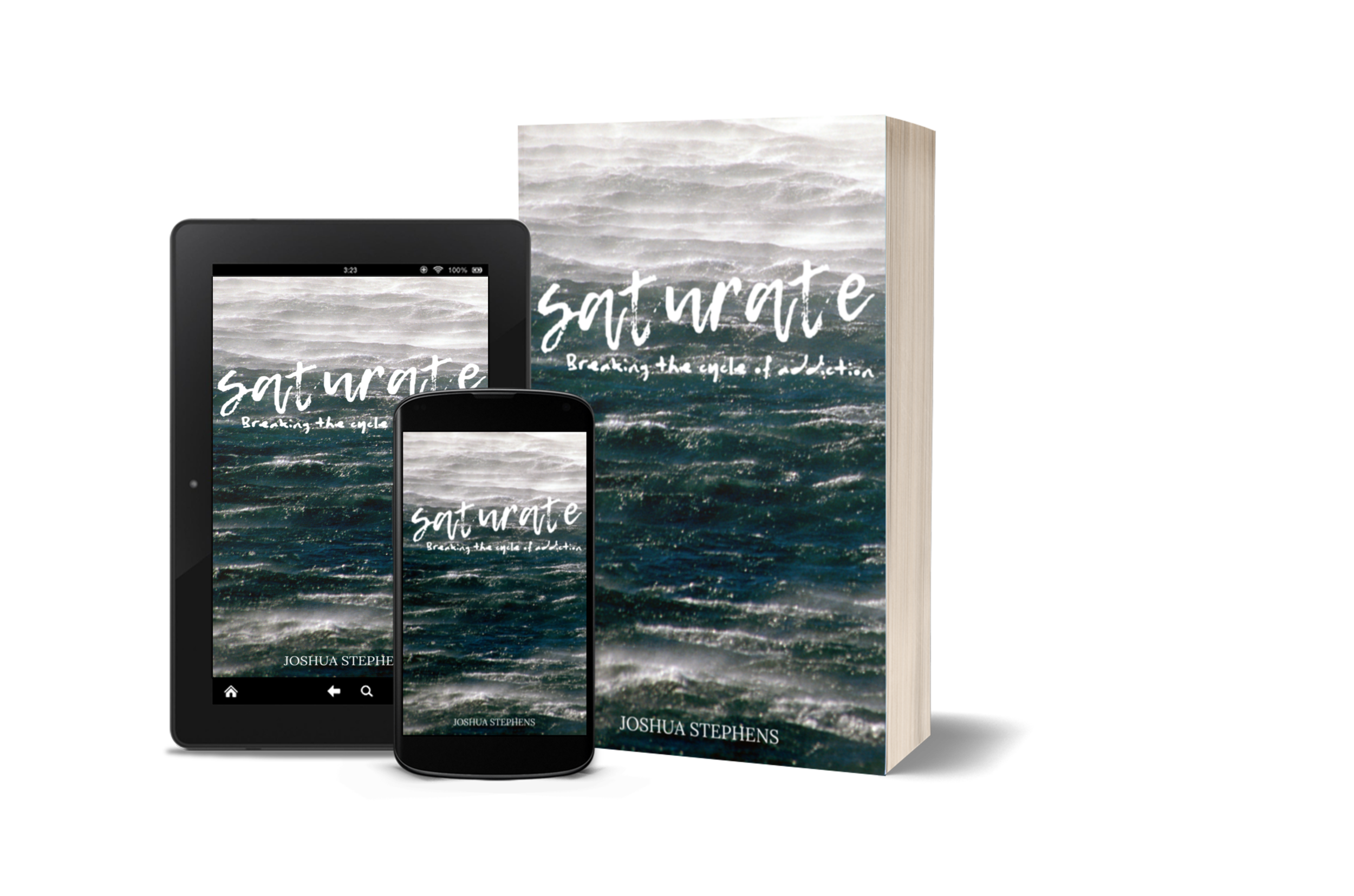 Saturate: Breaking the Cycle of Addiction  Book + Study Guide  Coming August 2020