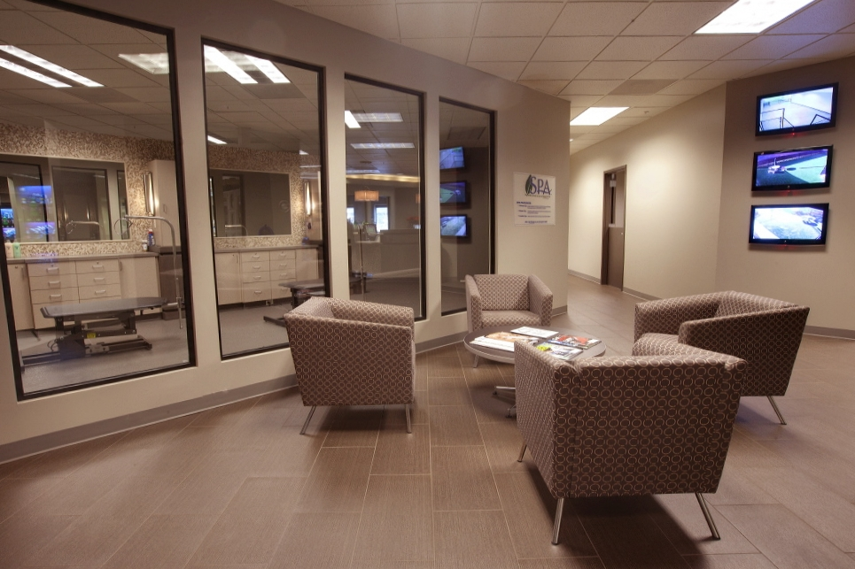 Waiting area at Kennel Creek