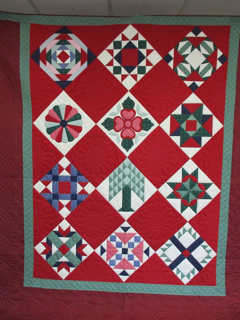 319, DELIGHTFUL SAMPLER, 100x100, Donated and Quilted by Erisman's Sewing Circle