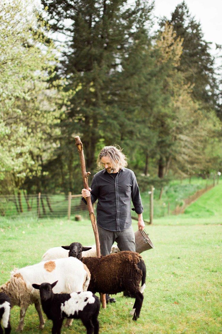 Corwynn with sheep.jpg