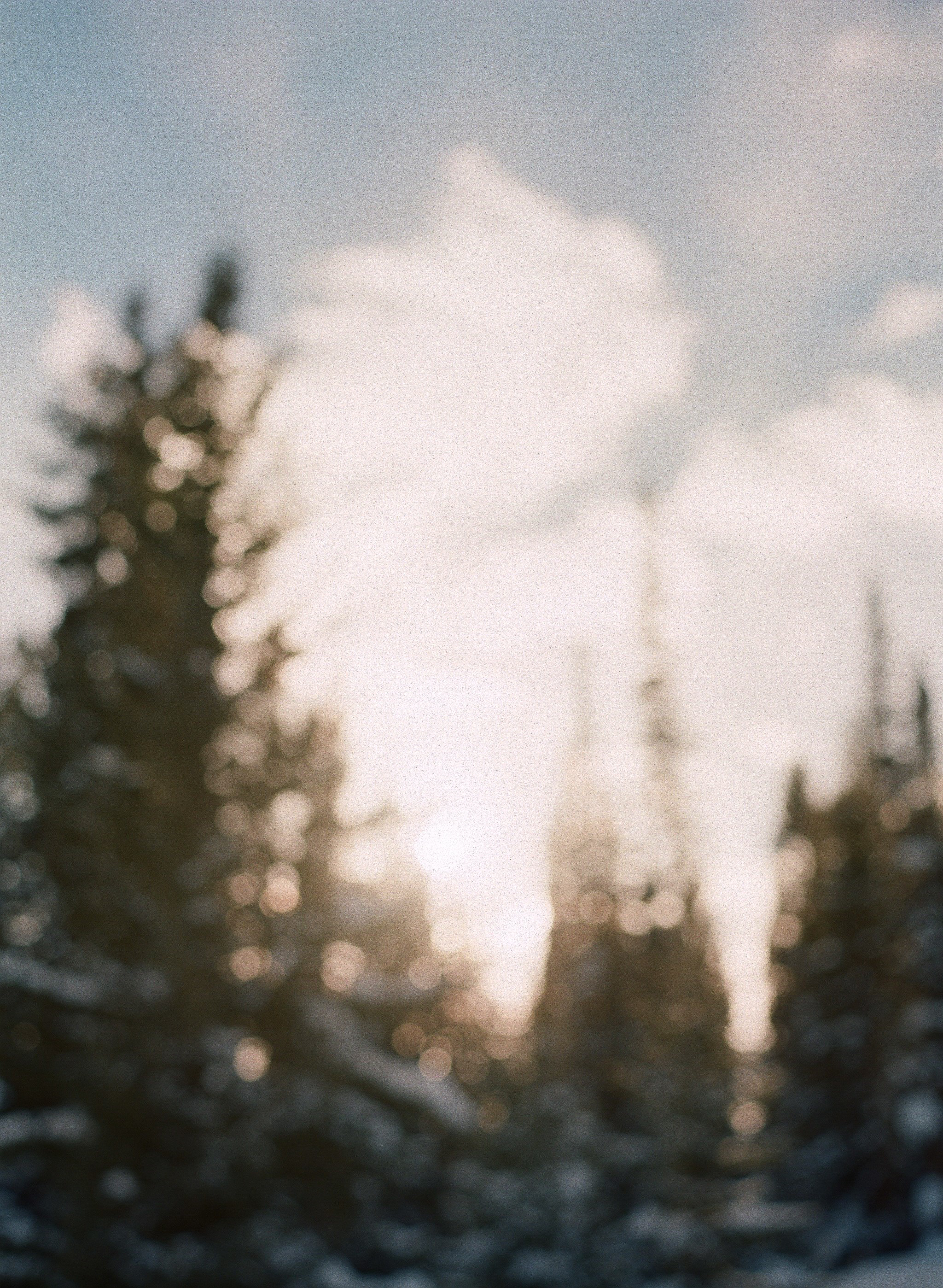 lauramurray-travel-destinationphotography-creativetravel-artists-filmphotography-unearthingtc-blur-pinetrees-snow.jpg