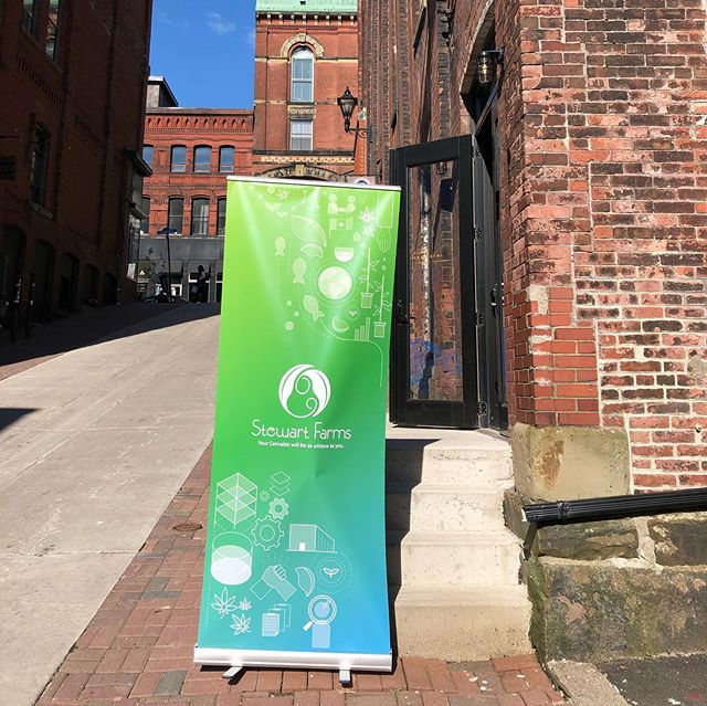 Our team is ready for the big launch! Stewart Farms Medical Cannabis: 5,000 Years & Counting Exhibit is tonight from 6-9 at the @tuckstudio in Saint John, NB. Come join us!  #stewartfarms #aquaponics #launch #medicinalcannabis #wcc #wcc2019 #worldcannabiscongress #healthandwellness #sustainable #sustainability