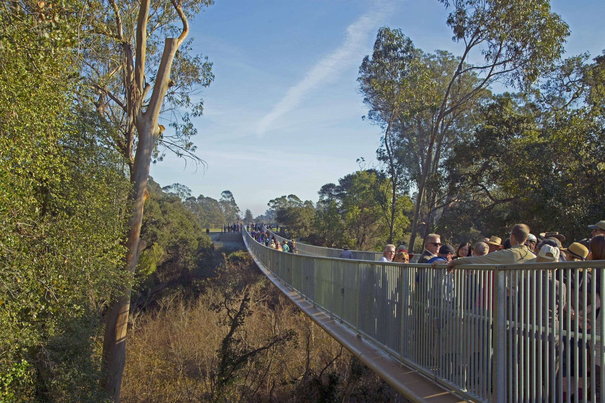 Arana Gulch Trail.jpg