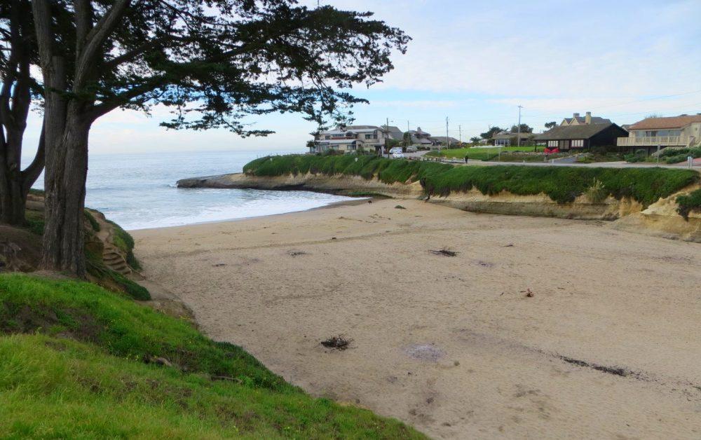 Sunny Cove Beach.jpg