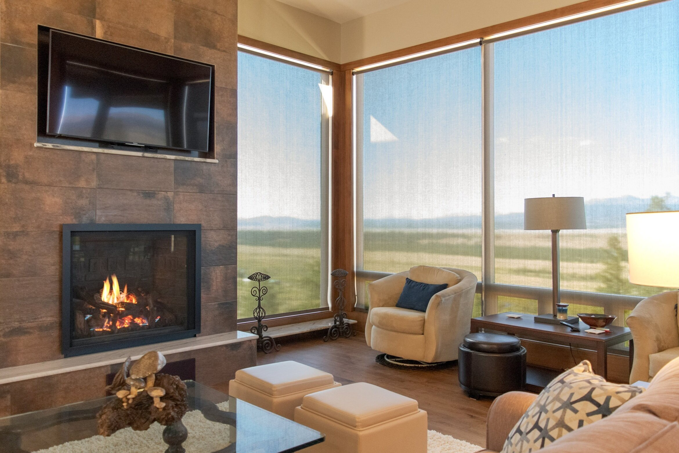 Mendota FV46 gas fireplace in a stylish modern room in Fairplay with a view of the mountains across South Park.