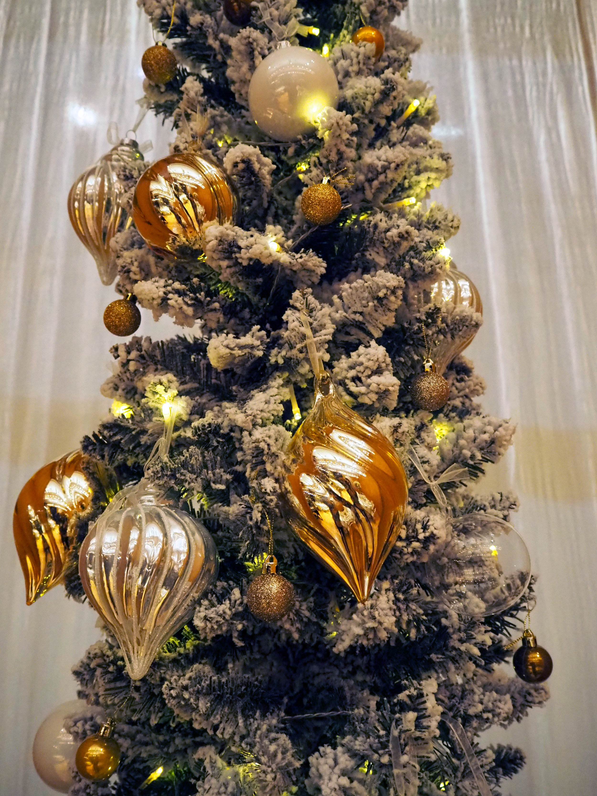 Christmas Tree AnotherDay Events