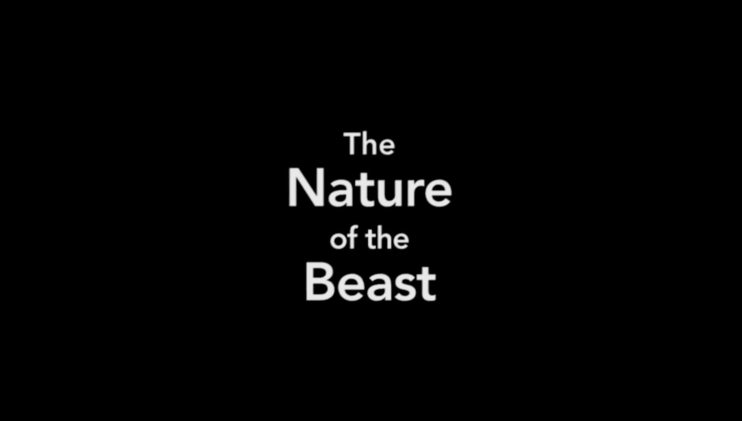 The Nature Of The Beast (1994)