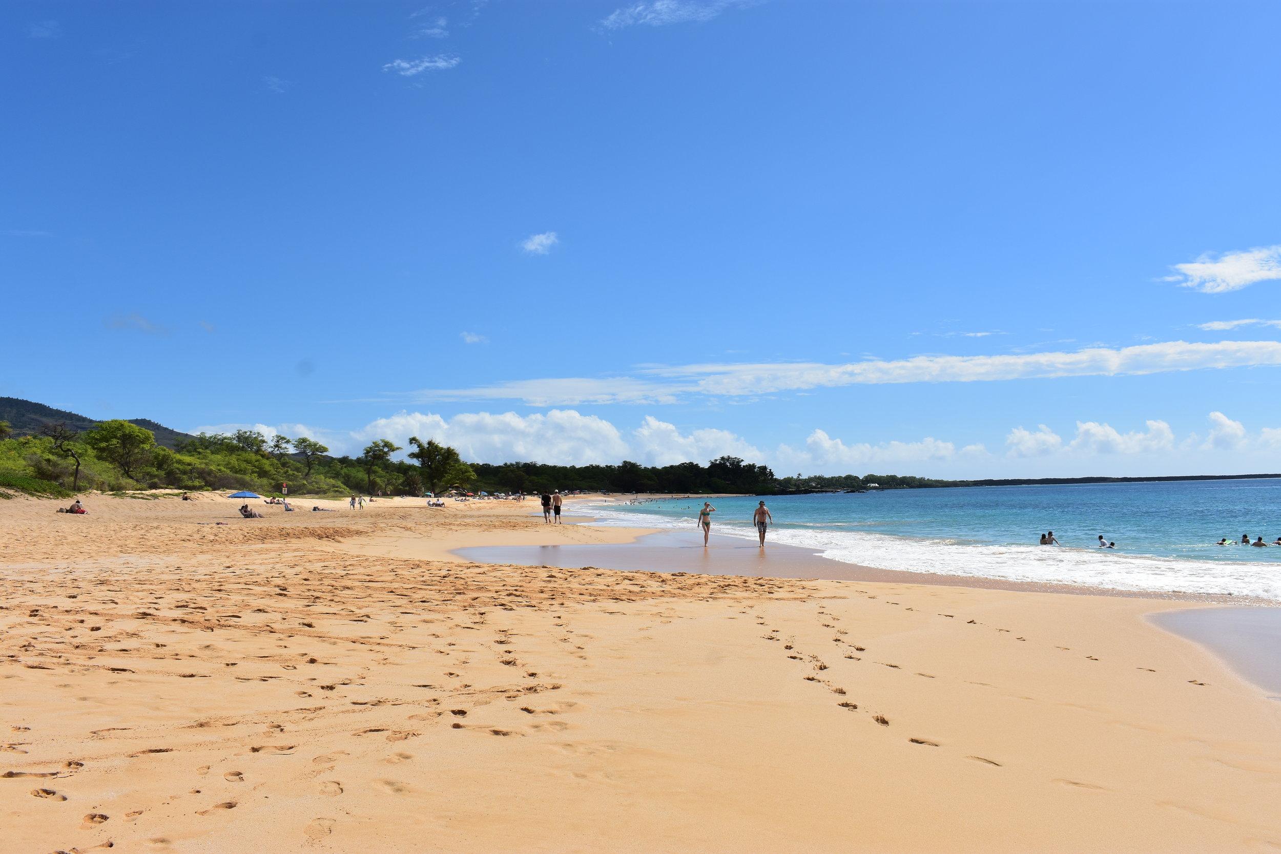 Big Beach Maui (13).JPG