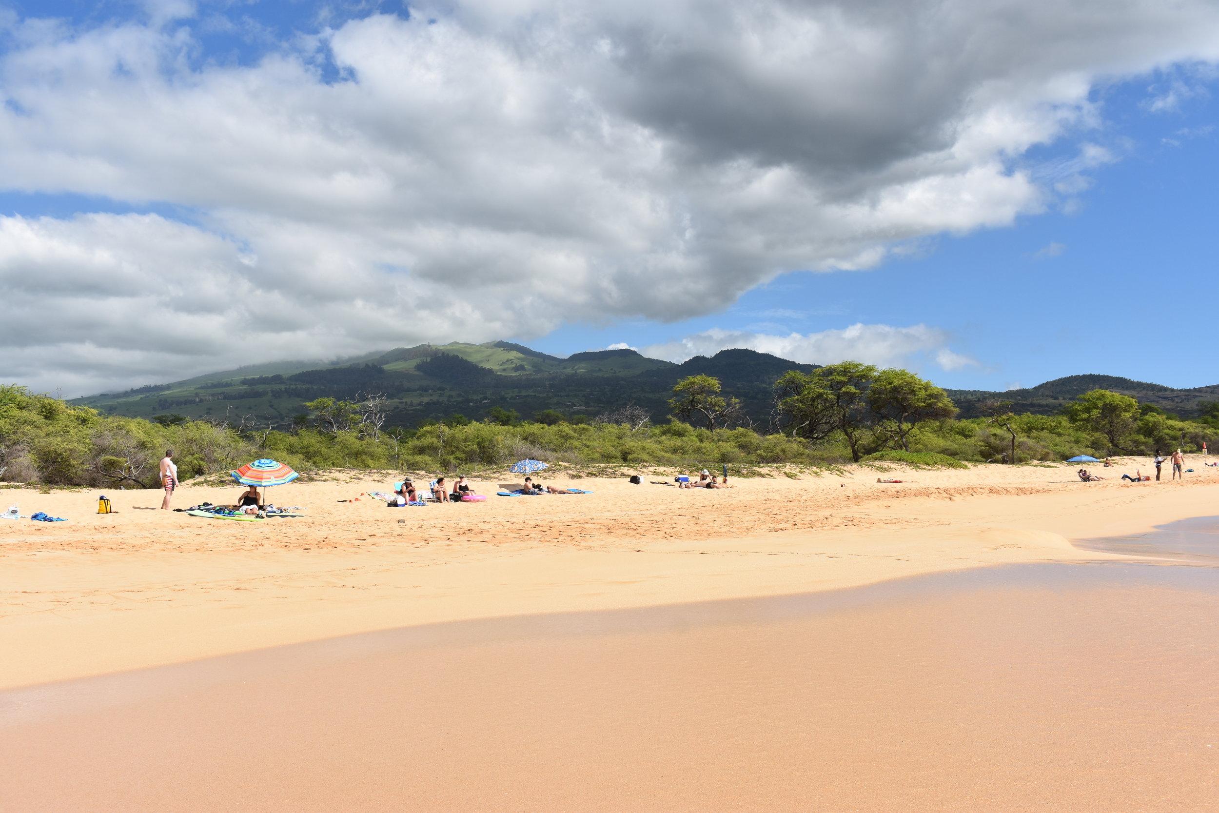 Big Beach Maui (28).JPG