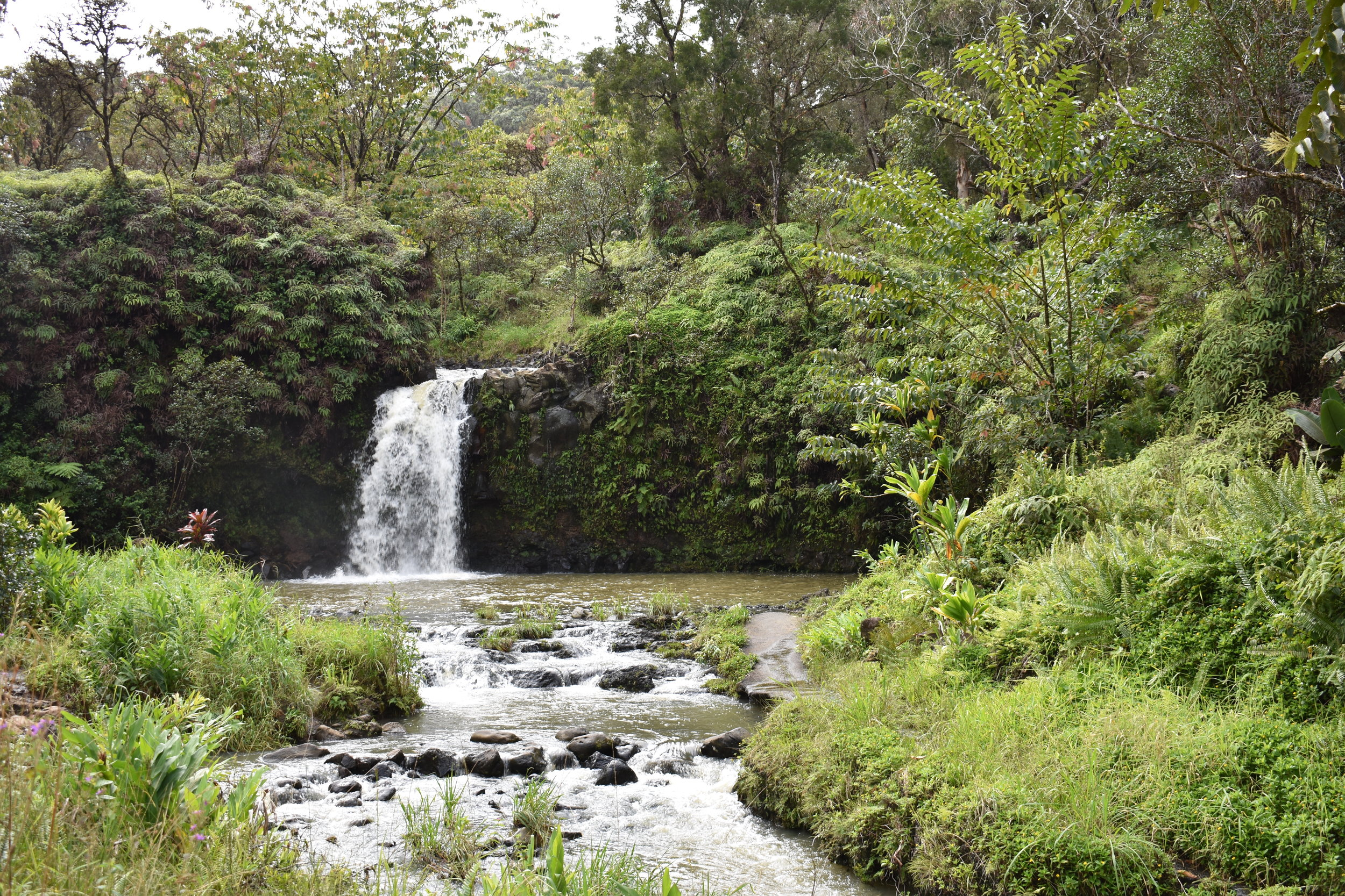 Road to Hana (18).JPG