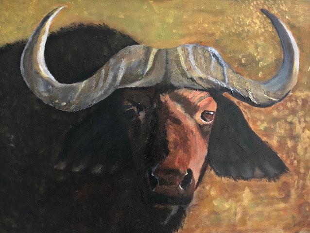 Buffalo Stare - £200.  Acrylic - 60cm x 45cm -  Card Available on Esty