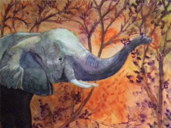 Elephant Eating - £120.  Watercolour (Framed) - 38cm x 32cm