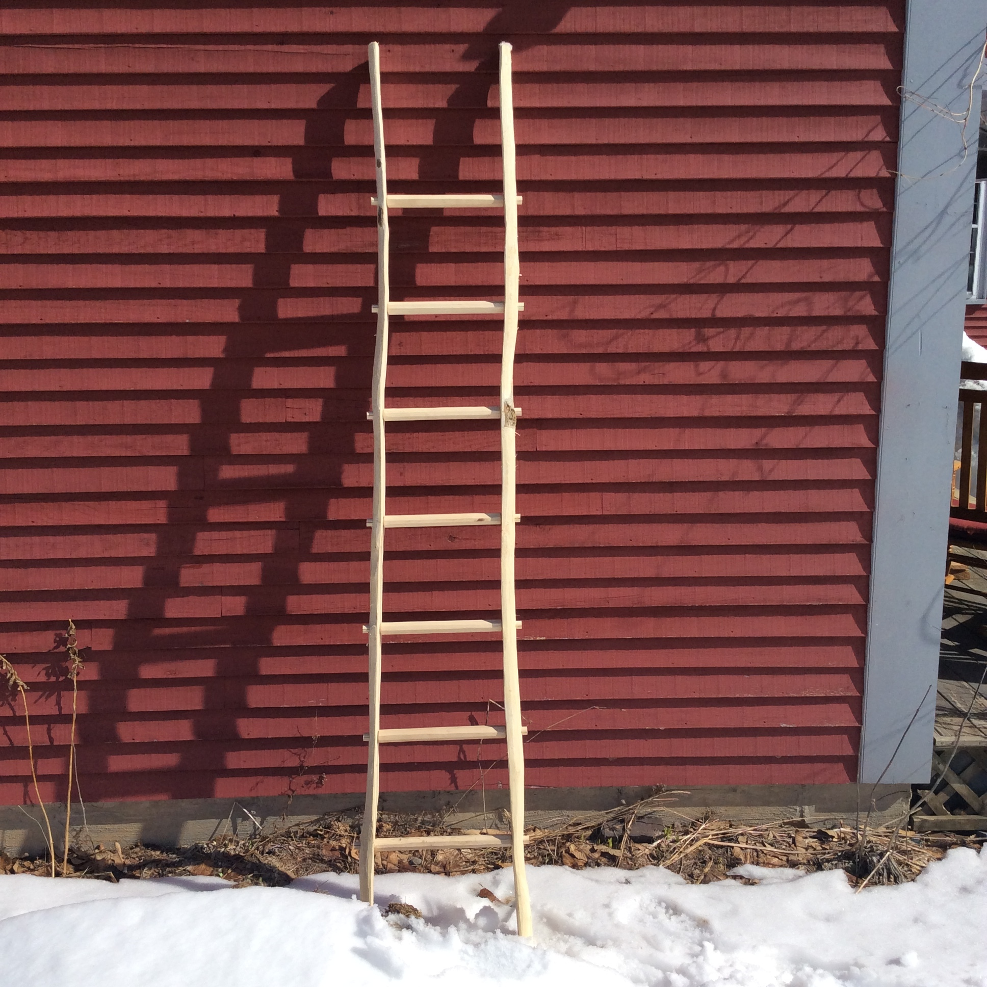 Maple ladder, 2018. The sides were made from a tree I cut down, the rungs were from kiln dried maple.
