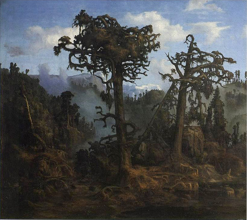 Lars Hertervig,  Old Pines , 1865