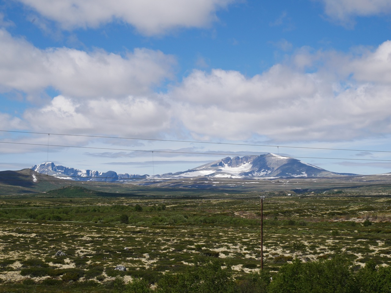 Land of the  musk ox  - Dovrefjell–Sunndalsfjella National Park.