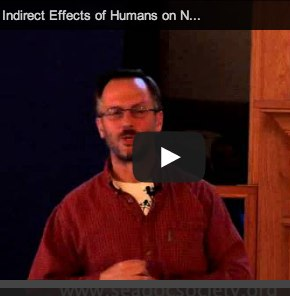 Video_-Peter-Arcese-on-the-Unintended-Consequences-of-Human-Actions.jpg