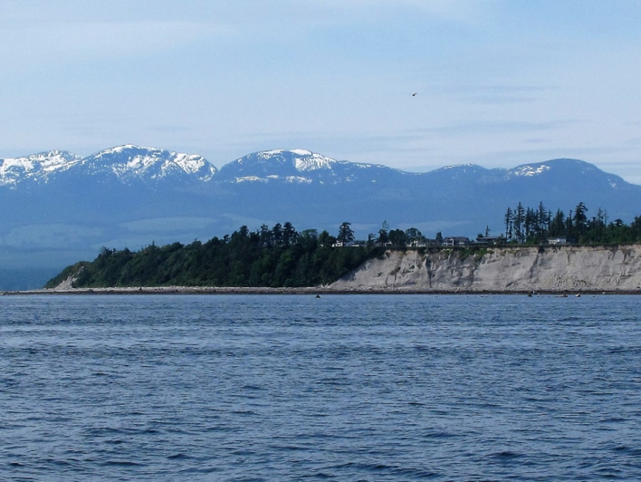 A large sand bluff near Comox, British Columbia with lots of salmon fishers about, which is another good sign for potential suitable sand lance burying habitat.