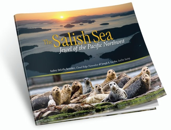 salish-sea-jewel.jpg