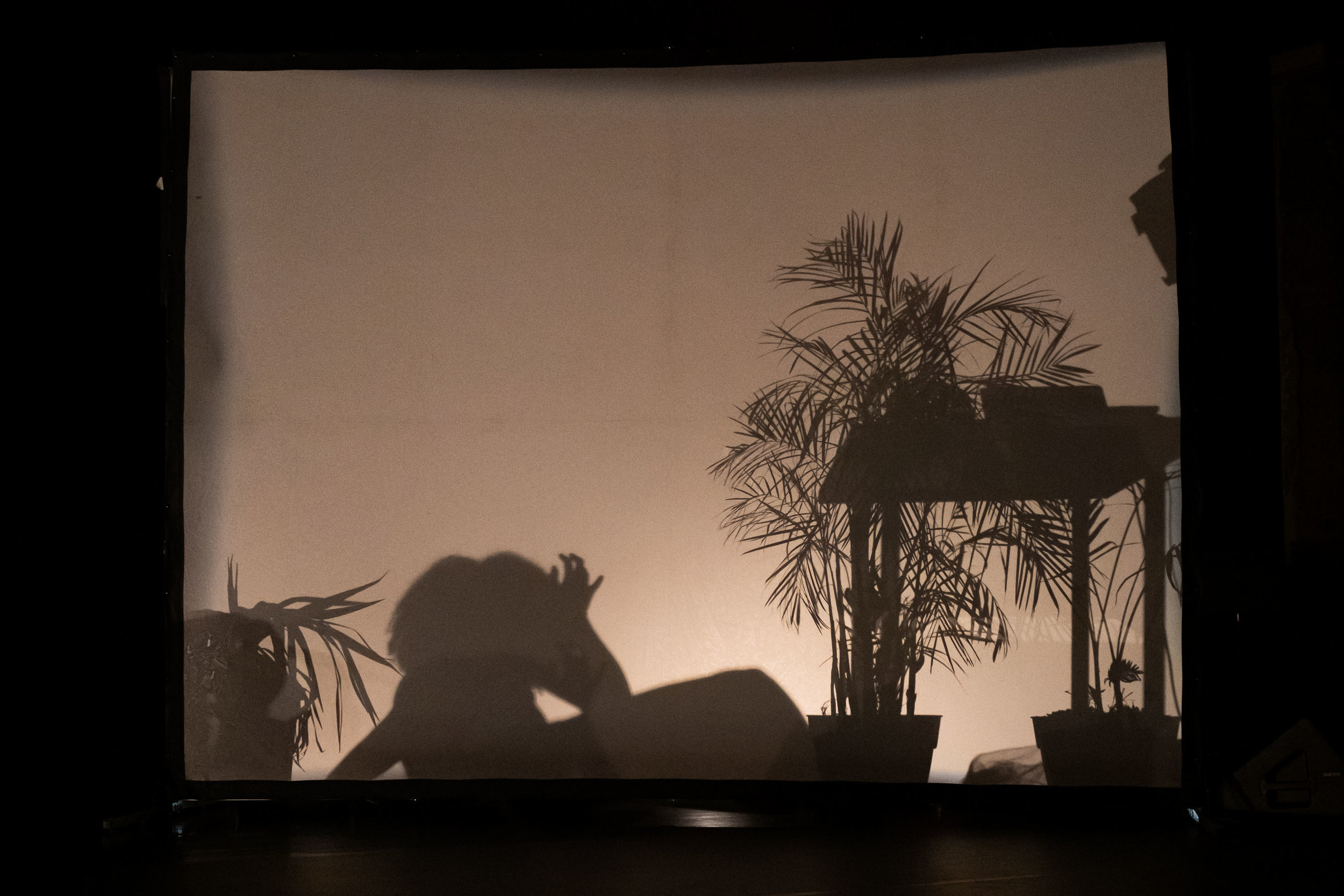 JOY MA behind scrim as shadow creature in Lovers of Low Creatures at Performance Space New York.