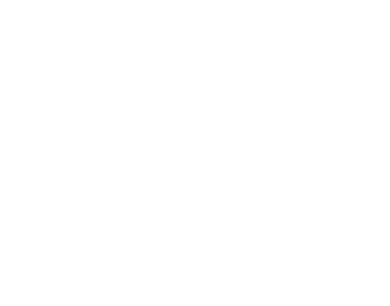 Arkansas Business Executive Leadership Academy