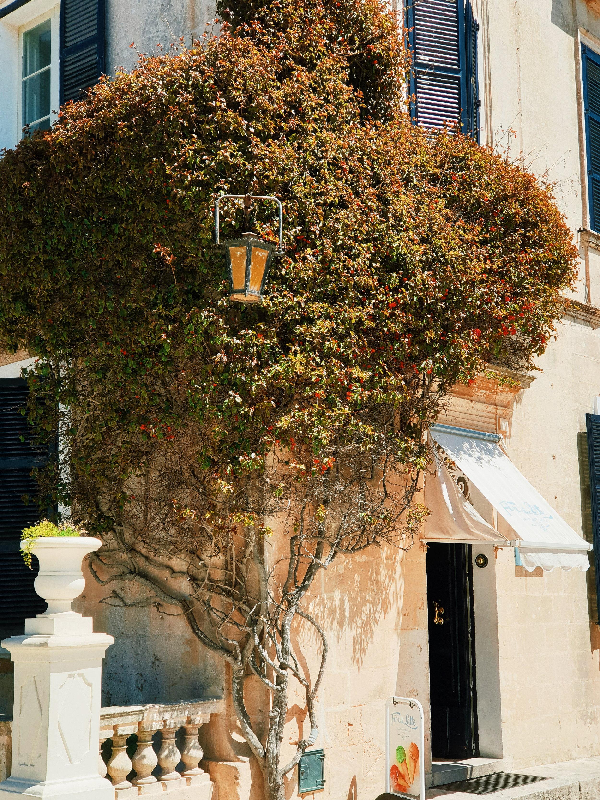 A corner view in Mdina, Malta