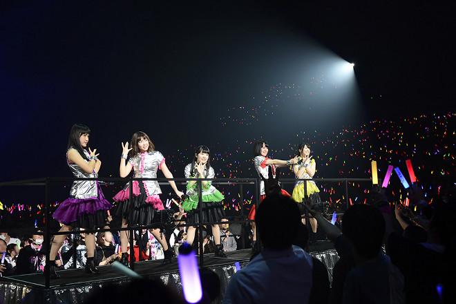 Photo courtesy of barks.jp