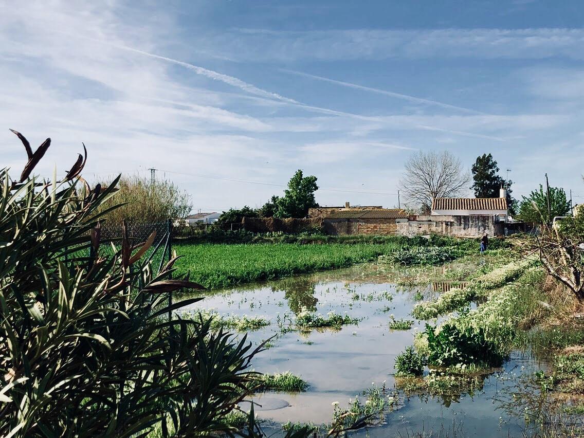 Ebro Delta, Spain -