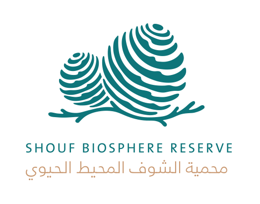 shouf-logo-footer.png