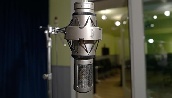 NJP Studios Mic Tube Brauner VMA