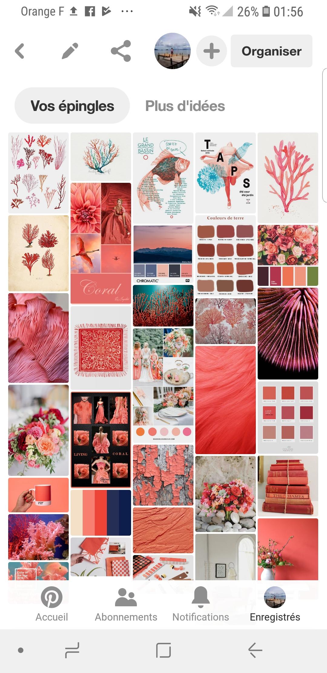 Tableau Living Coral Inspirations Pinterest Noomadia.jpg