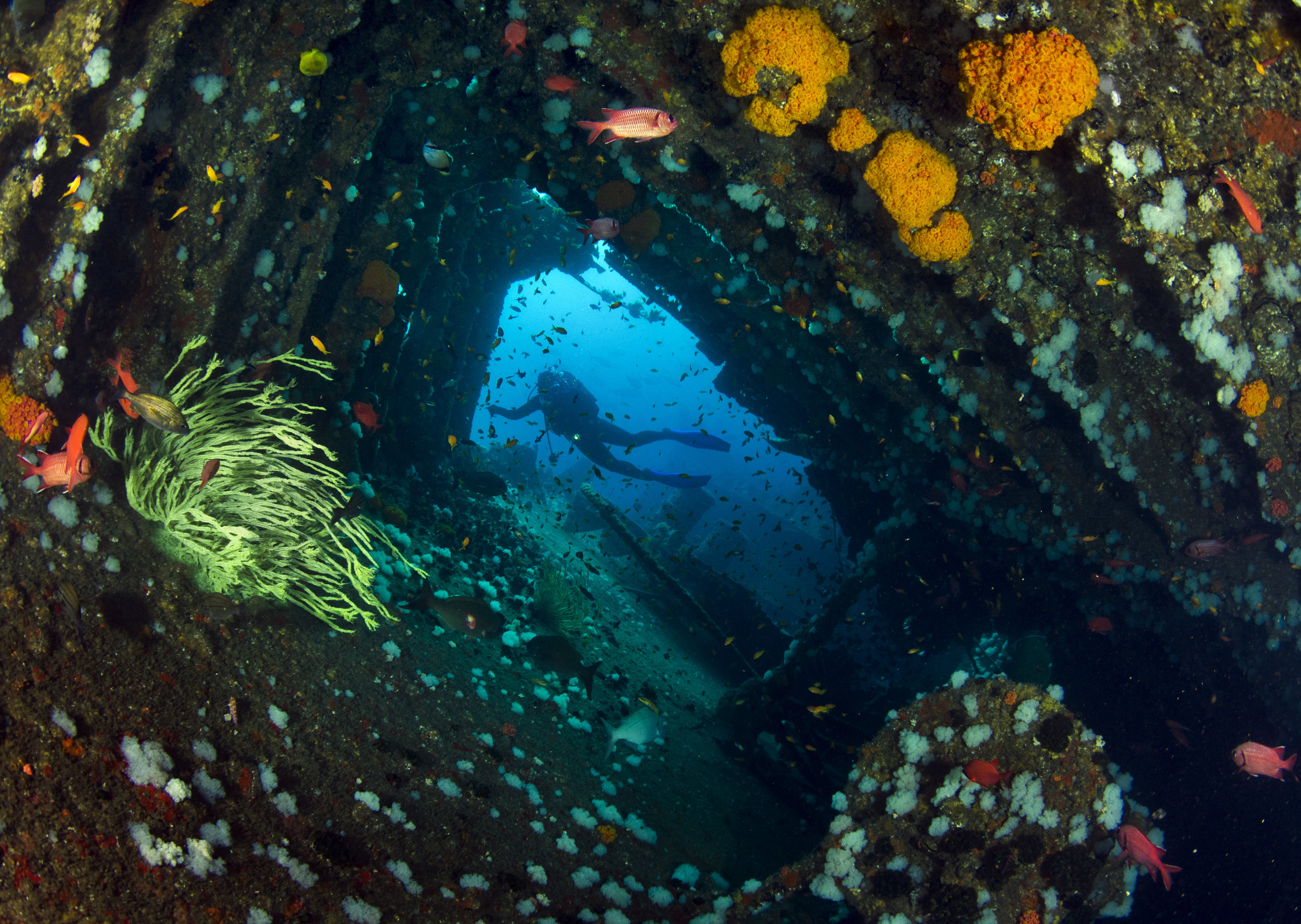The wreck of the Produce is a major tourist attraction (Geoff Spiby)