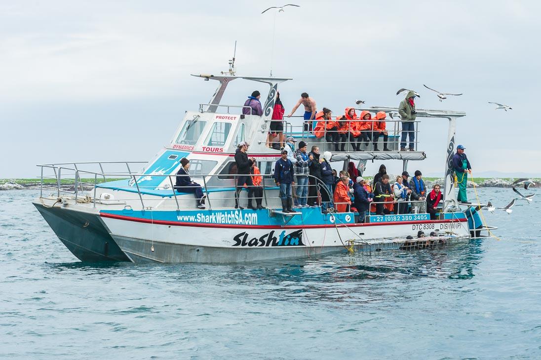 041_MPA Tourism & Activities_©PeterChadwick_AfricanConservationPhotographer.jpg